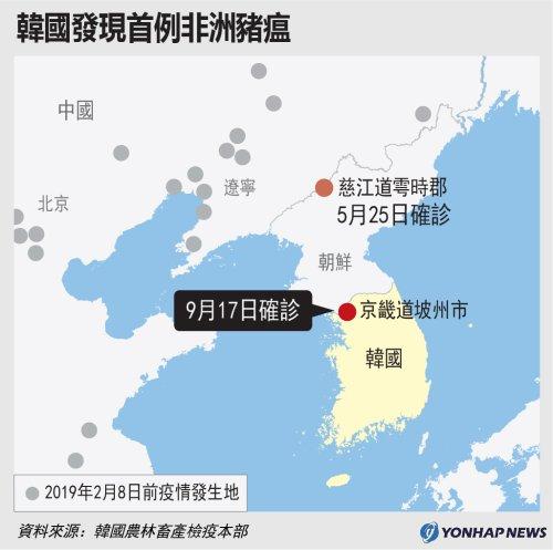 南韓發現首例非洲豬瘟
