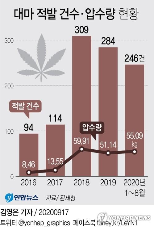 資料圖片:近五年大麻走私案件和查獲數量走勢 韓聯社
