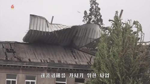 朝鮮全力推進颱風災後恢復工作