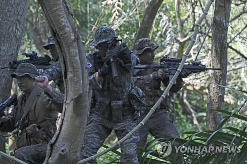 韓軍正考慮不參加金色眼鏡蛇聯演
