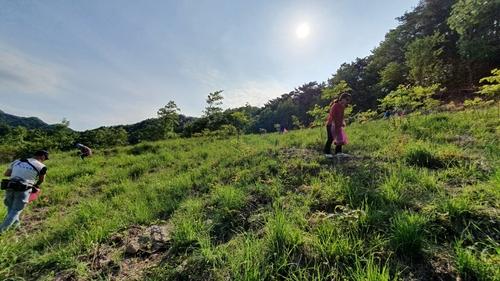 調查:近八成南韓人計劃今年在國內短途遊