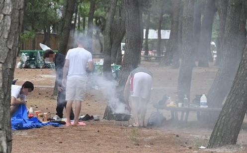 資料圖片:露營族在林內生火做飯。 韓聯社