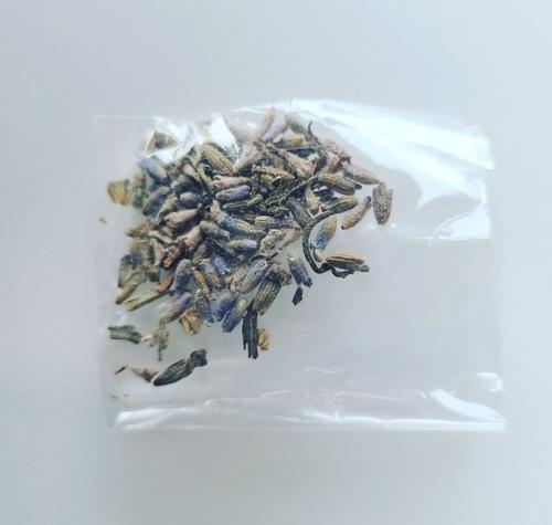 韓網民稱收到寄自中國的不明種子