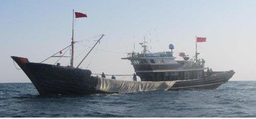報告:近5年南韓抓獲1704艘非法捕撈中國漁船