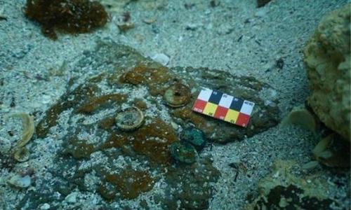 圖為在濟州道新昌�堮�域發現的中國古代硬幣。 韓聯社/國立海洋文化財研究所供圖(圖片嚴禁轉載複製)