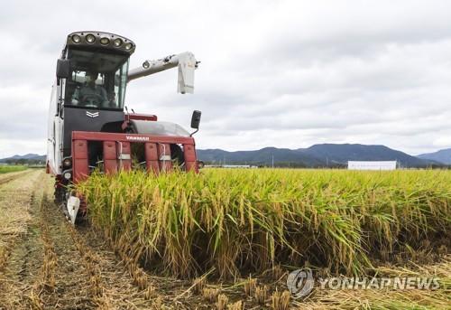 韓2020年米制食品出口同比增27%創新高