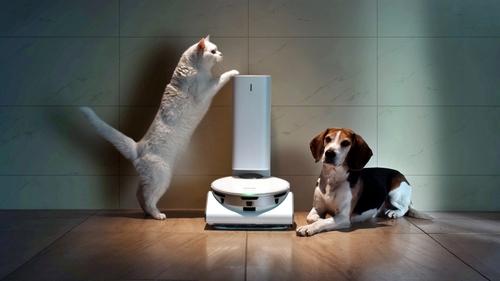 """智慧照看寵物服務""""SmartThings Pet"""" 韓聯社/三星電子供圖(圖片嚴禁轉載複製)"""