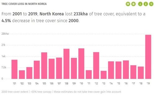 朝鮮森林面積19年來縮減23.3萬公頃