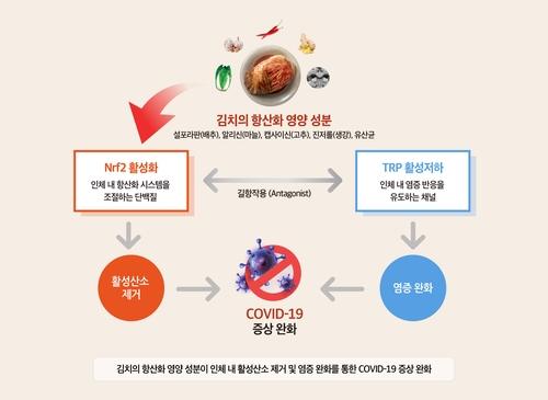 韓泡菜研究所:泡菜有助於減輕新冠症狀