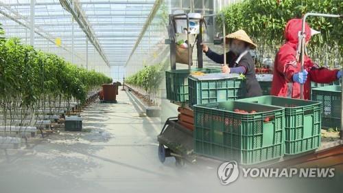 韓政府延長外籍勞工居留期限一年
