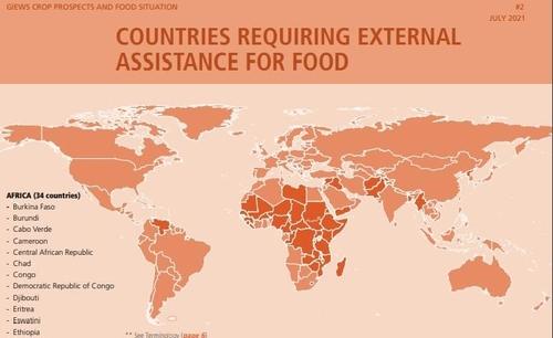 聯合國報告:逾四成朝鮮居民營養不良