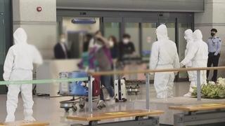 164名在印韓企員工乘撤僑航班回國