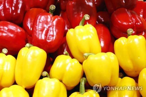 韓中甜椒檢疫問題談判達成協定