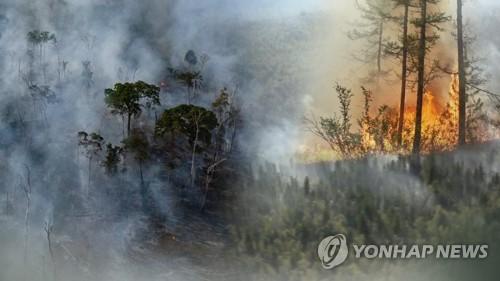 朝鮮提出力爭到2030年碳減排16.4%