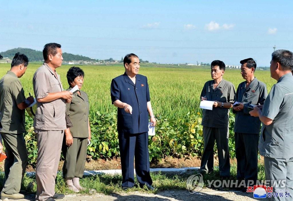 報告:朝鮮借農業市場化走出糧食安全困境