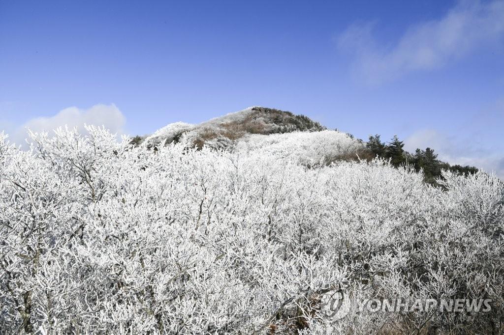 智異山霧凇美景