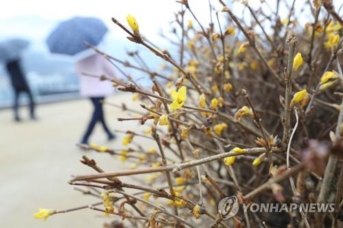 2019年南韓平均氣溫創觀測史第二高