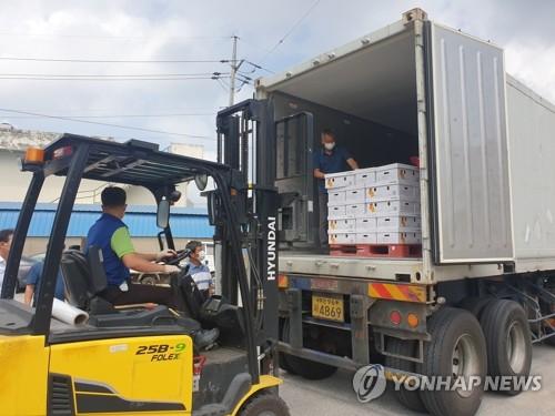 南韓產彩椒正式對華出口