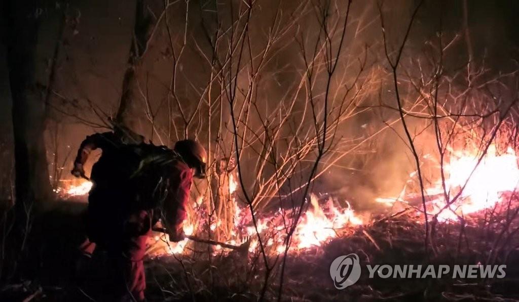 詳訊:南韓中南部多地發生森林火災