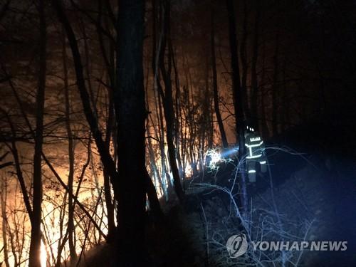 南韓東南地區多地發生森林火災