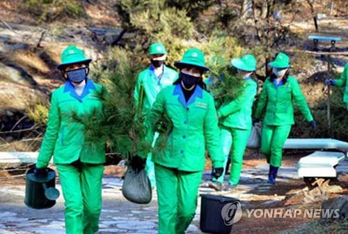 朝鮮迎植樹節