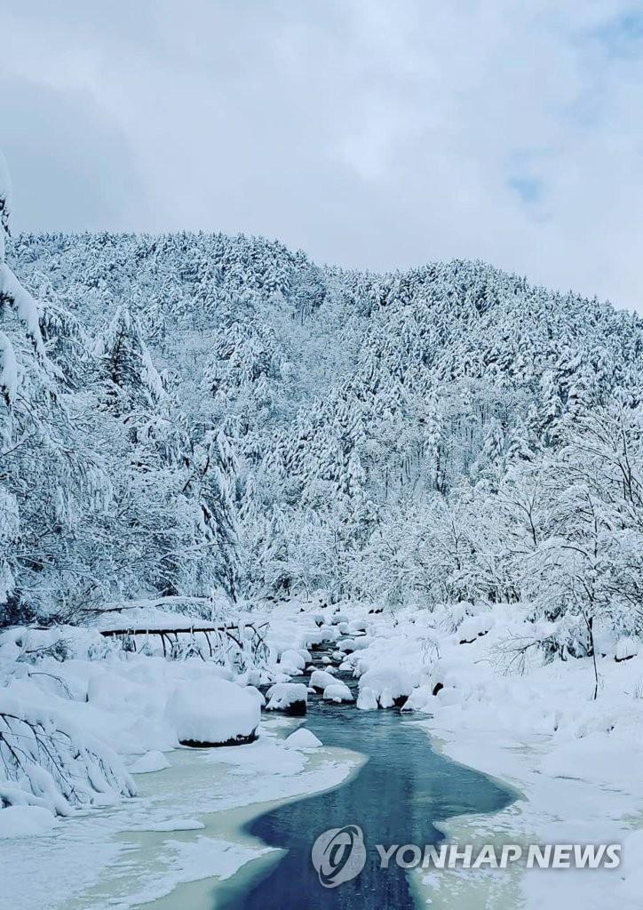五台山白雪皚皚