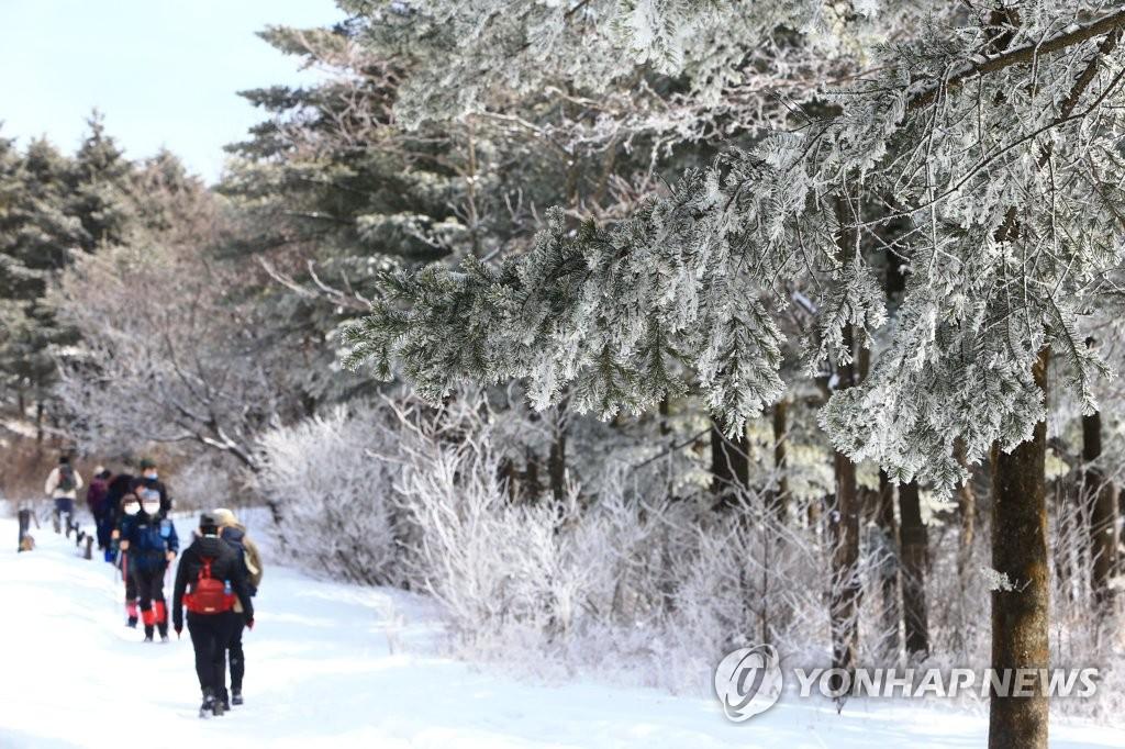 大關嶺雪路