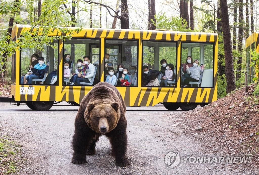 愛寶樂園推導覽車遊野生動物園