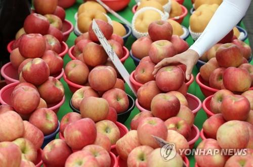 中秋蘋果備貨足