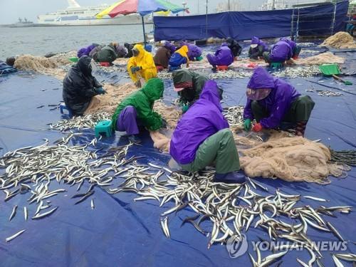 漁民喜獲豐收